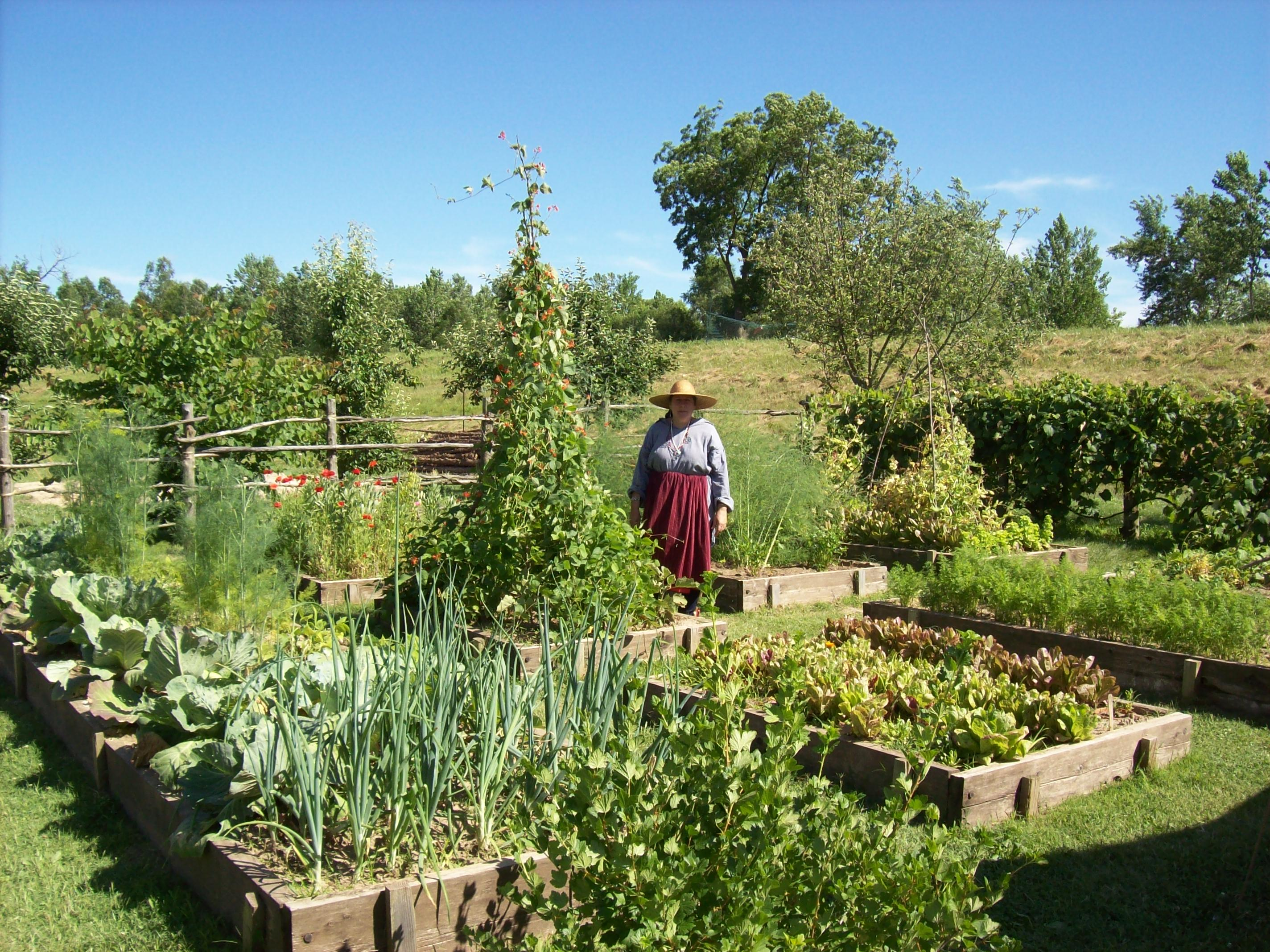 Le Jardin Potager En Janvier jardin potager – french kitchen garden – fort de chartres